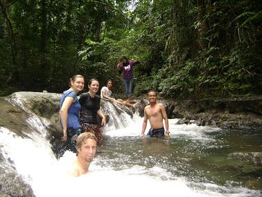 petualangan di hutan lambusango
