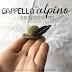 Quella lunga penna nera: cappello alpino amigurumi - schema gratuito