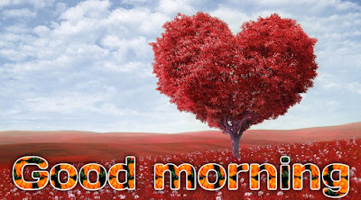 Good morning heart flower images for free download