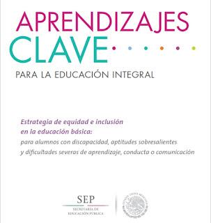 Estrategia de equidad e inclusión en la educación básica: para alumnos con discapacidad, aptitudes sobresalientes y dificultades severas de aprendizaje, conducta o comunicación