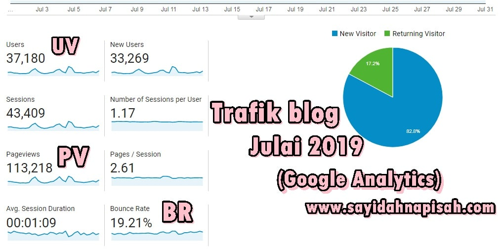 trafik blog pageviews