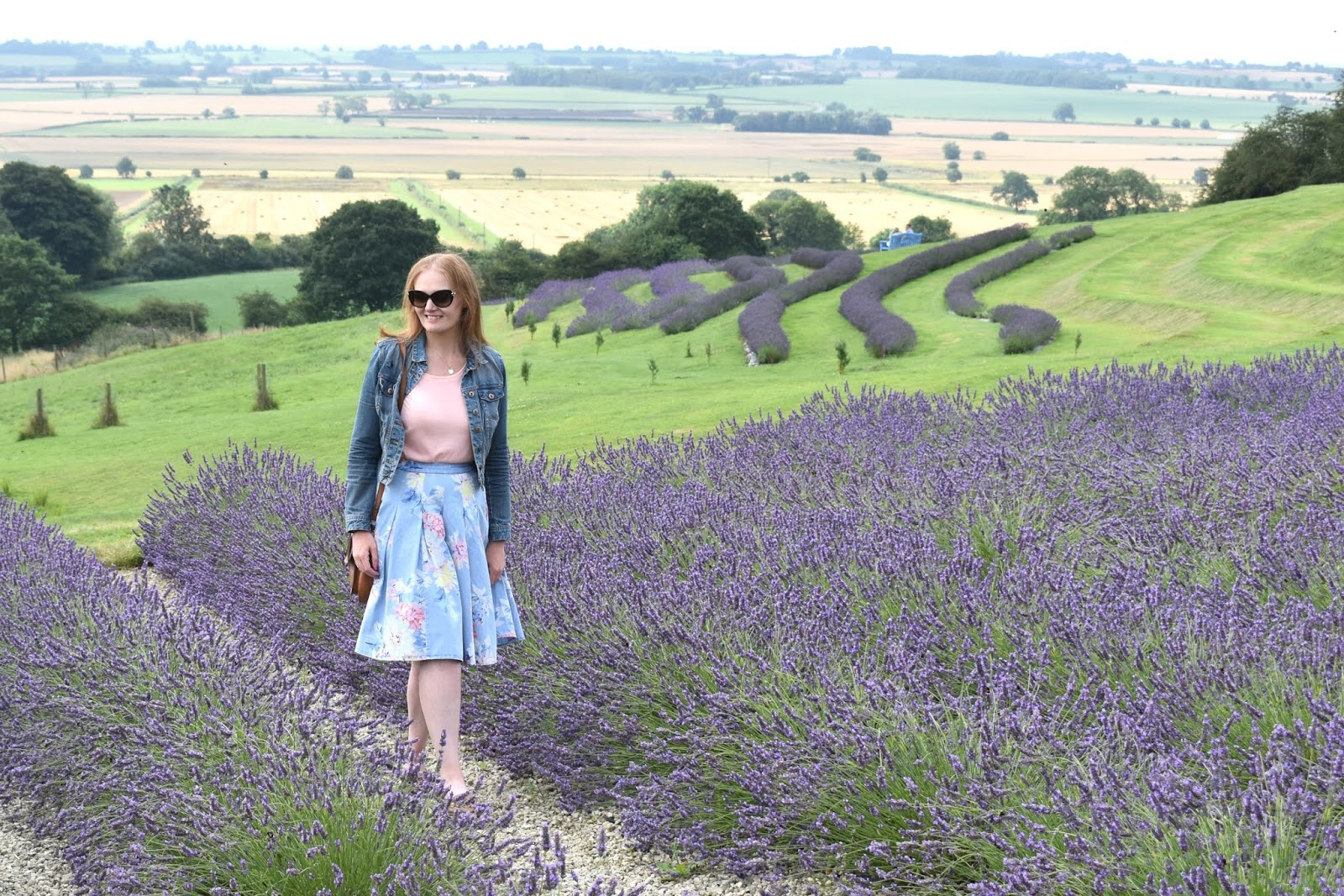 North of England - A Trip to Yorkshire Lavender
