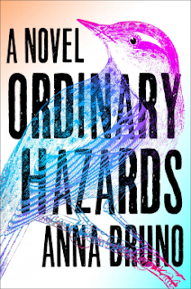 Book Review and GIVEAWAY: Ordinary Hazards, by Anna Bruno {ends 1/12}