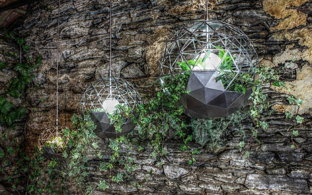 Geodesic Terrariums Wall
