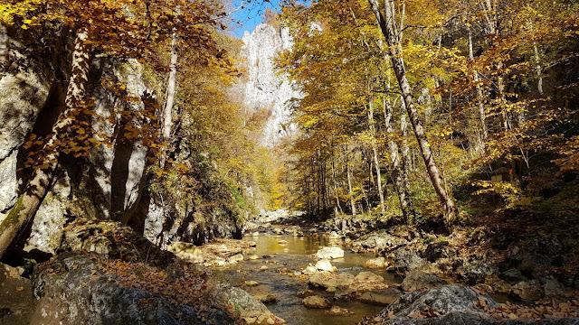 Cheile Vârghișului - Traseu în Munții Perșani, județul Harghita