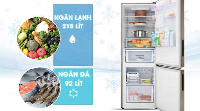 Tủ lạnh hai cửa Ngăn Đông Dưới 307L (RB30N4170DX/SV)