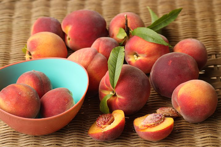 الدراق - الدراق والخوخ - الدراق ماهو -الدراق موضوع peach,princess peach,peaches,peach pie,peach tree,peach ripe,evil peach,flat peach,peach fruit,donut peach,peach slime,pardi peach,peach scone,peach scene,whole peach,white peach,peach trees,peach booty,fruit peach,coiled peach,mario x peach,saturn peach,peach soccer,peach battles,peach ke fayde,peach eat laek,bowser x peach,peach eat leak,mario and peach,peach tree care,peach benefits,gabaleth peach
