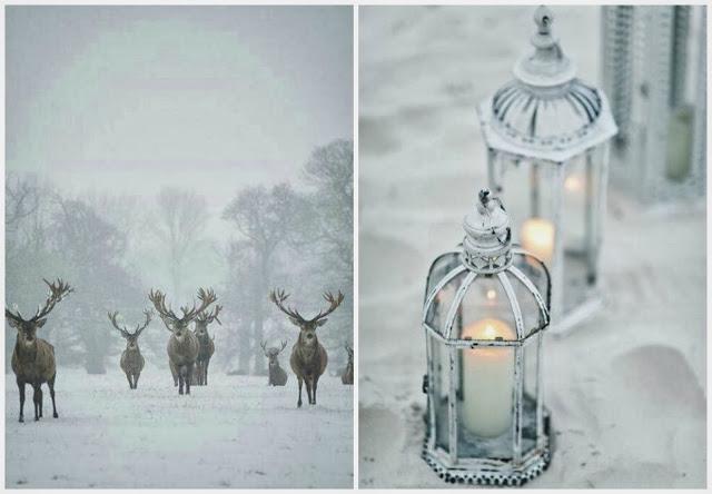 zima w grudniu