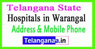 Hospitals in Warangal In Telangana