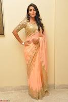 Bhanu Shri looks stunning in Beig Saree choli at Kalamandir Foundation 7th anniversary Celebrations ~  Actress Galleries 014.JPG
