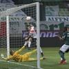 www.seuguara.com.br/Palmeiras/River Plate/Copa Libertadores/
