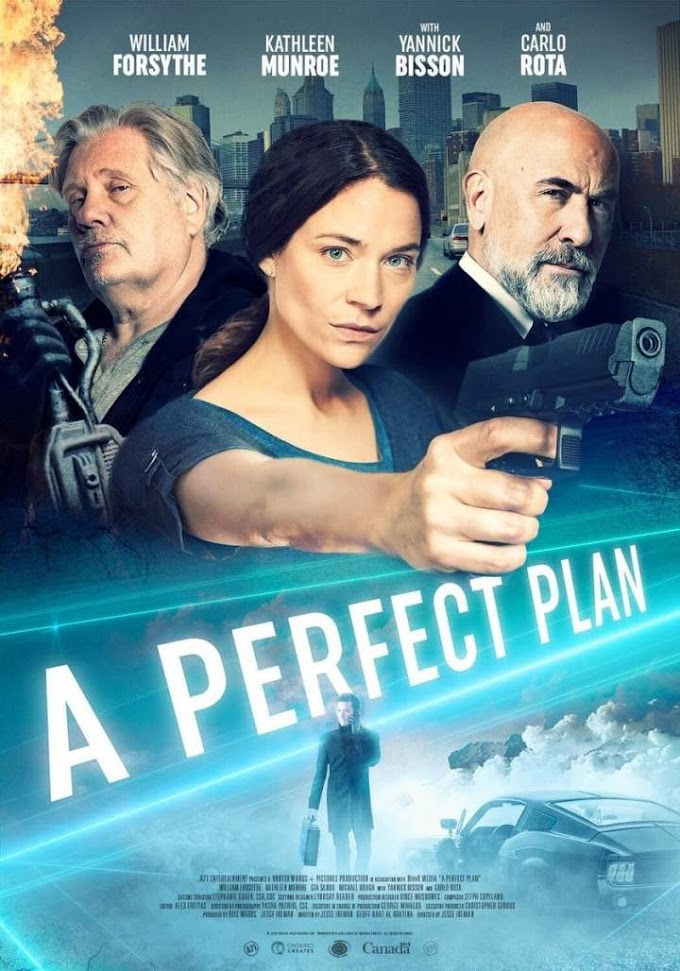 A Perfect Plan (2020) Movie Download