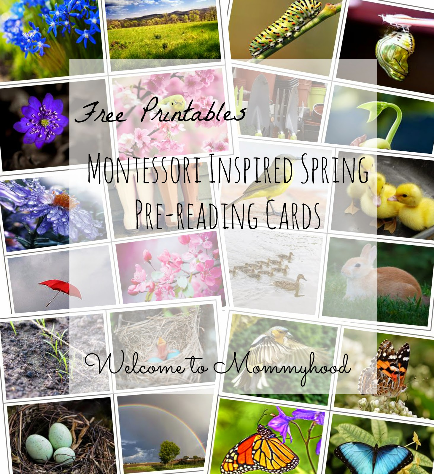Montessori inspired toddler activities: spring themed prereading cards by Welcome to Mommyhood. These are beautiful cards that can be used as a matching game, memory game, or simply to show children images of springtime!  #montessori, #toddleractivities