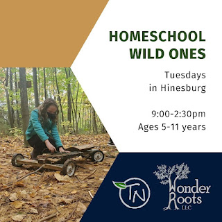 photo of a child in a blue sweatshirt building a wooden cart in the woods, To the right is the following text: Homeschool Wild Ones Tuesdays in Hinesburg. 9-2:30pm Ages 5-11years