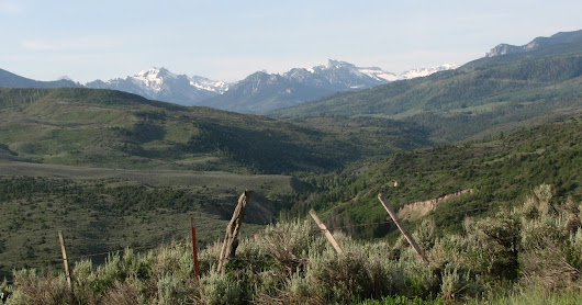 Road Trip to the Uncompahgre Forest of Colorado