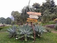 Wawai nyo Alam Lampung