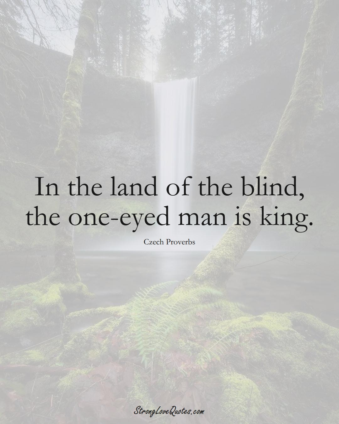 In the land of the blind, the one-eyed man is king. (Czech Sayings);  #EuropeanSayings