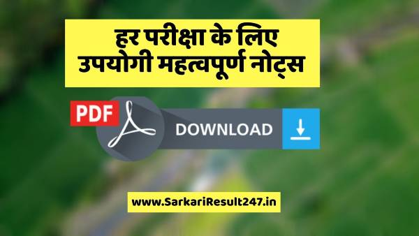 Vision IAS Polity Notes in Hindi PDF Download