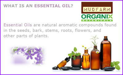 Pure Essential Oils For Sale