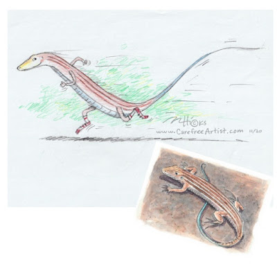 Whiptail Lizard Sketch