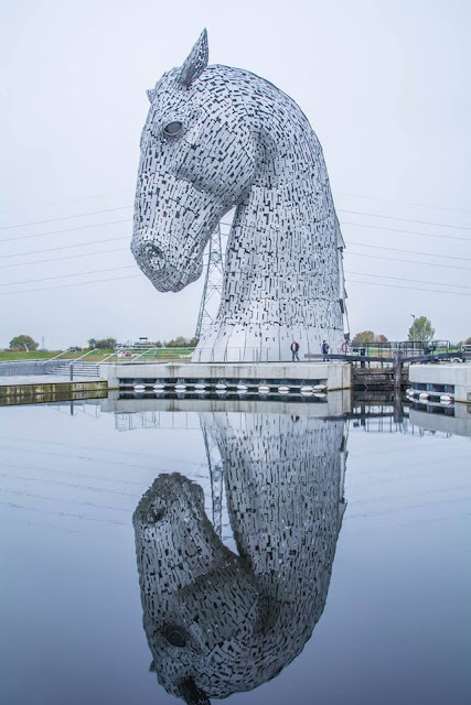 Kelpie Reflection by LT