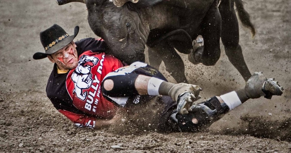 daily timewaster: The bull gets the clown