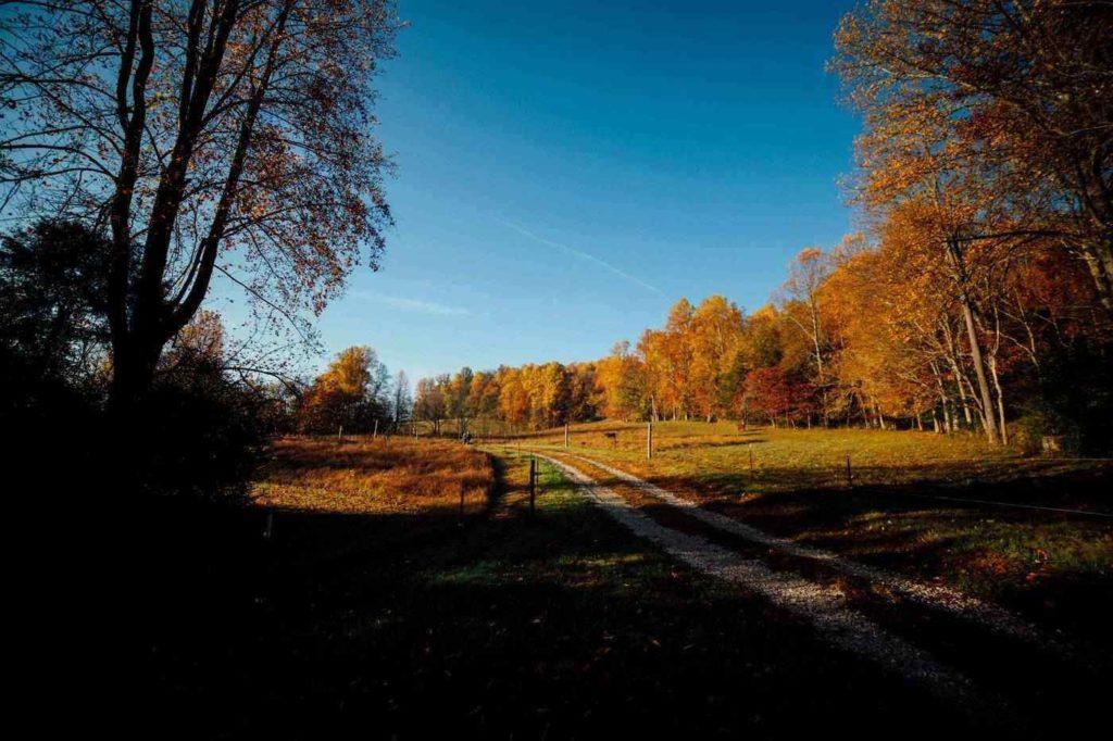 Windy Ridge Trail -- Fall