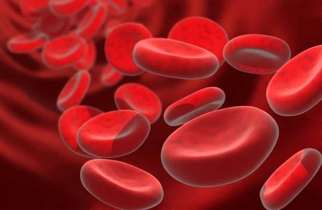 افضل علاج لنقص كريات الدم الحمراء