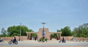 courses offered in al-qalam university katsina