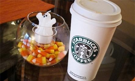 Cà phê Starbucks Pumpkin Spice Latte tiềm ẩn nhiều hóa chất gây hại cho người tiêu dùng