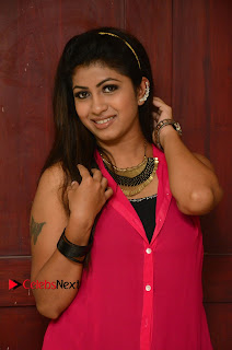 Actress Geethanjali Pictures in Pink Dress at Avanthika Movie Opening 0008