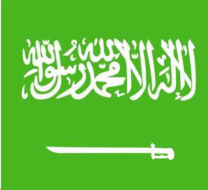 كل ما تحتاج ان تعرفه عن العقار في السعودية