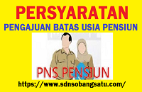 Persyaratan Pengajuan Batas Usia Pensiun (BUP)