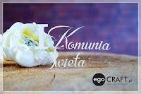 http://www.egocraft.pl/produkt/566-napis-i-komunia-sw
