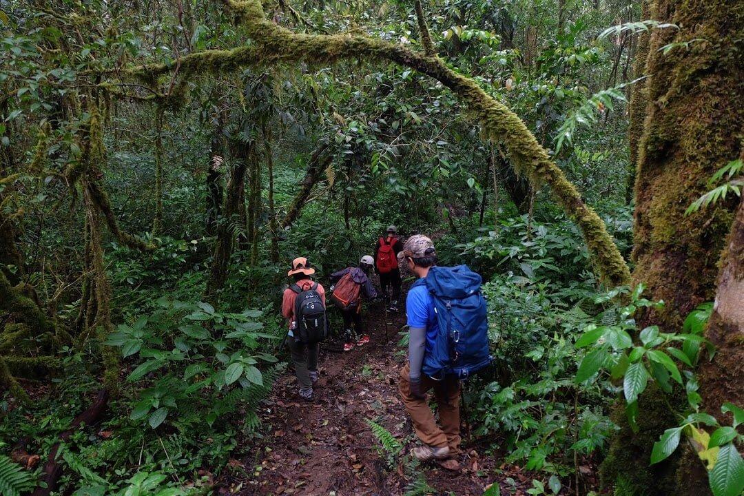 5 kỹ năng đi trekking cho người mới để khởi hành thuận lợi
