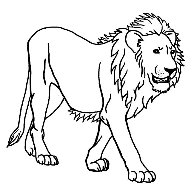 Gambar Mewarnai Singa Untuk Anak