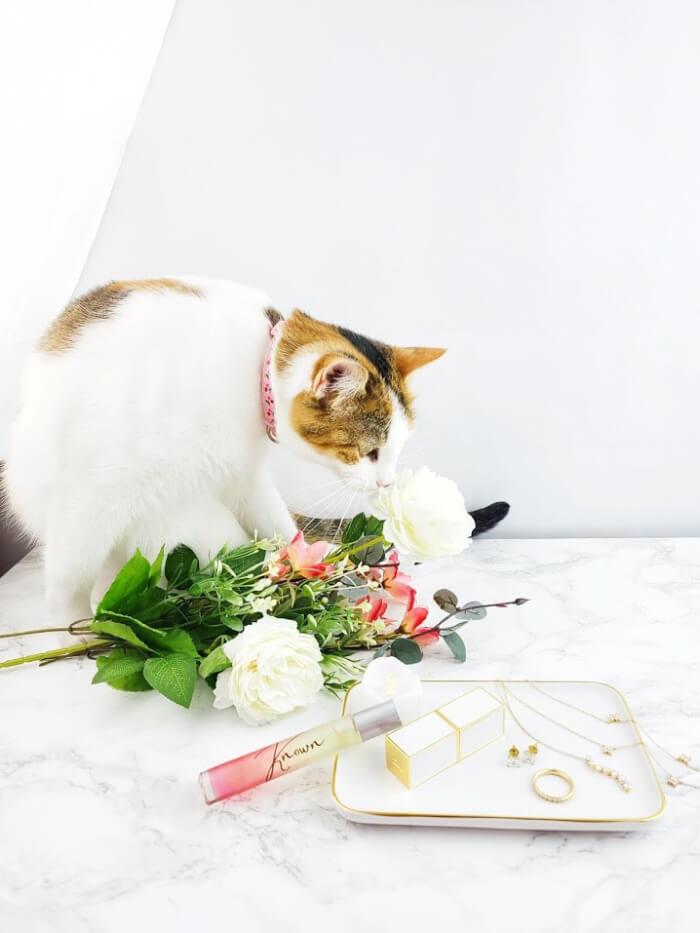 a-girls-gotta-spa-known-perfume-daisy-adair-tasty-flower