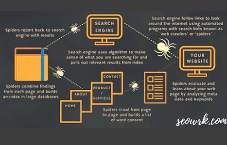 Search Engine कैसे काम करता है