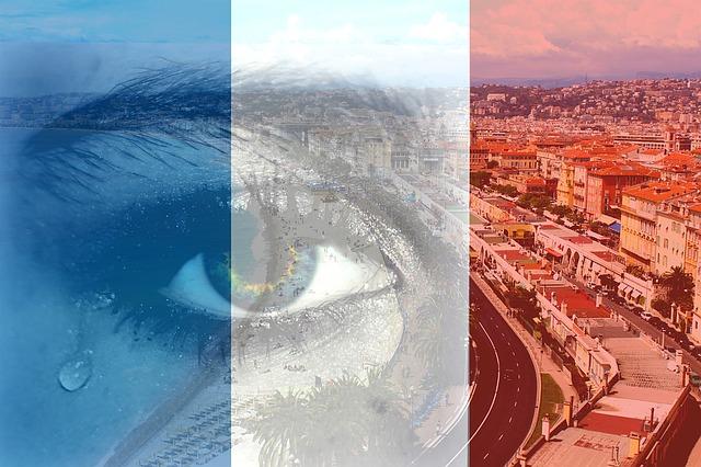 3 Fakta Pelaku Penyerangan Di Gereja Notre Dame Perancis