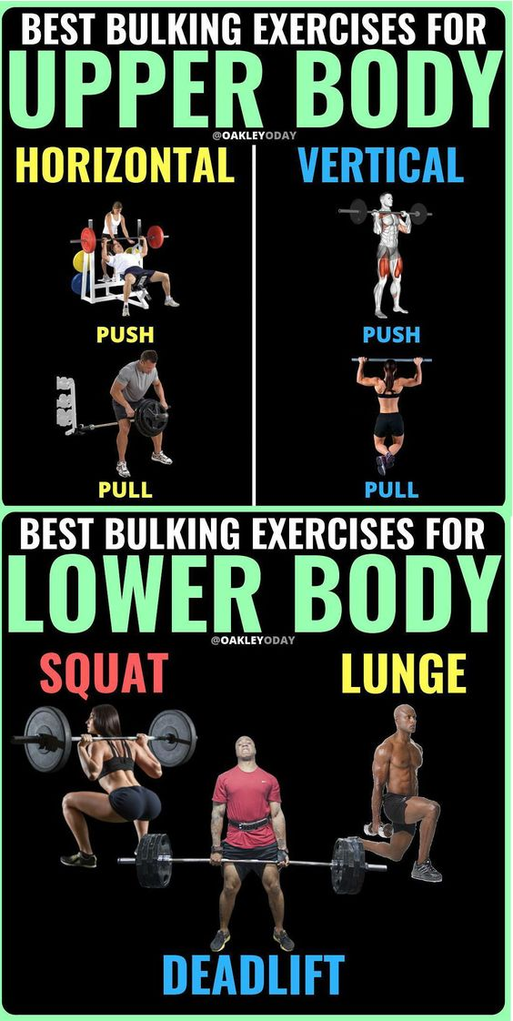 BEST  BULKING WORKOUT EXERCICE  FOR UPER AND LOWER BODY