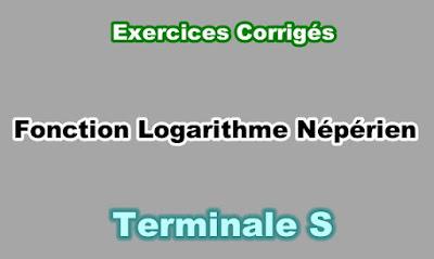 Exercices Corrigés de Fonction Logarithme Népérien Terminale S PDF
