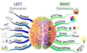 Melatih Anak Menggunakan Otak Kanan Dan Kiri Secara Seimbang