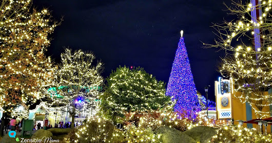All Things Wonderful at Carowinds Winterfest