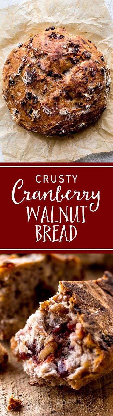 Crusty Cranberry Nut No Knead Bread