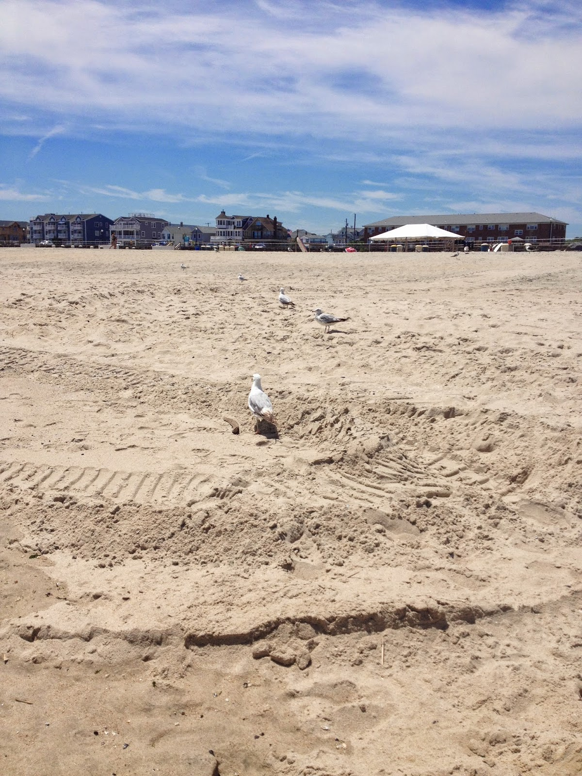 Jersey Shore Summer Expedition 2014: Ocean Grove Beaches
