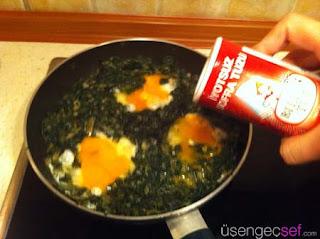 resimli-yumurtali-ispanak-tarifi