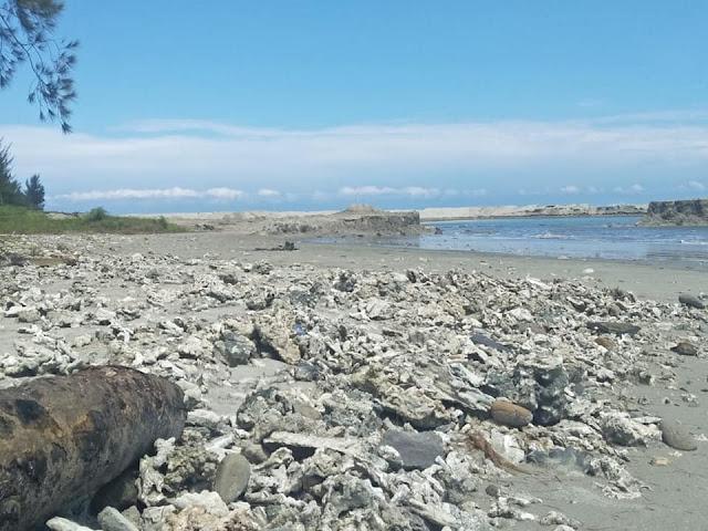 terumbu karang yang hancur di pantai bengkulu