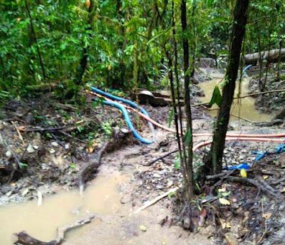 Bupati Abock Busop dan Pemda Aktor Penambag Liar di Kabupaten Yahukimo