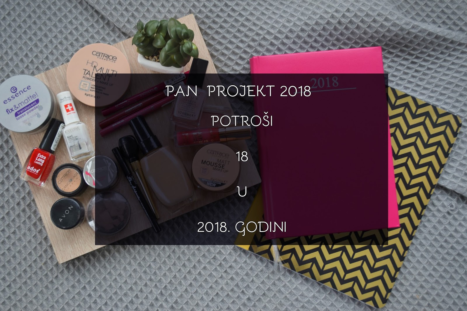 Pan-projekt-2018-potroši-18-u-2018-godini