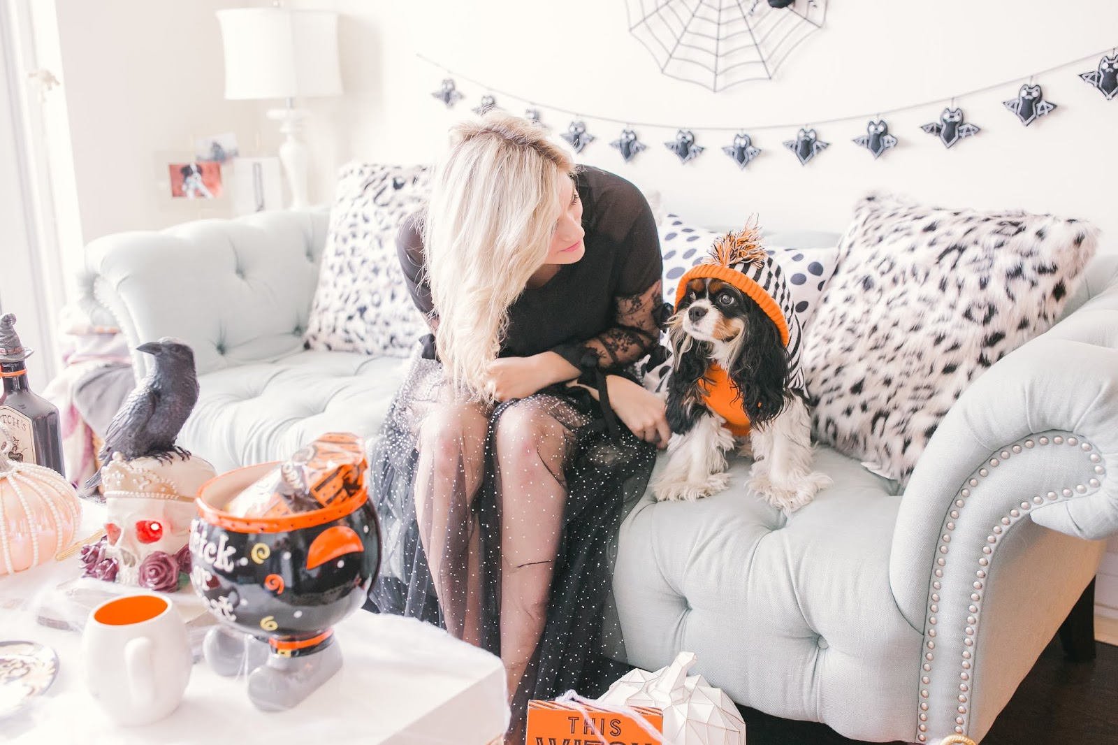 Bijuleni - How to Decorate Your Living Room for Halloween - Cavalier King Charles Spaniel dog wearing a hoodie